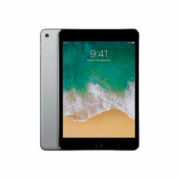ipad-mini-4-space-gray